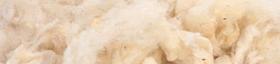 Lanas de esquila